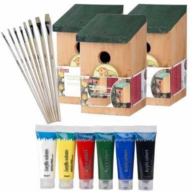 3x stuks houten vogelhuisje/vogelhuisje 22 cm zelf schilderen pakket verf/kwasten
